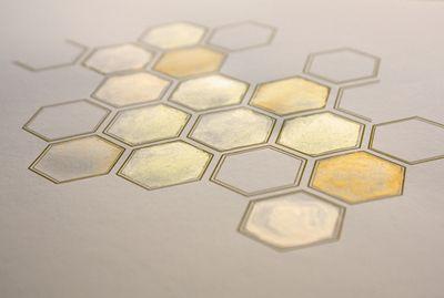 24hexagonal-kalli