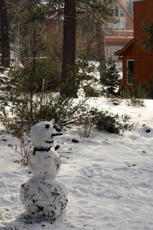 SnowyGetaway14